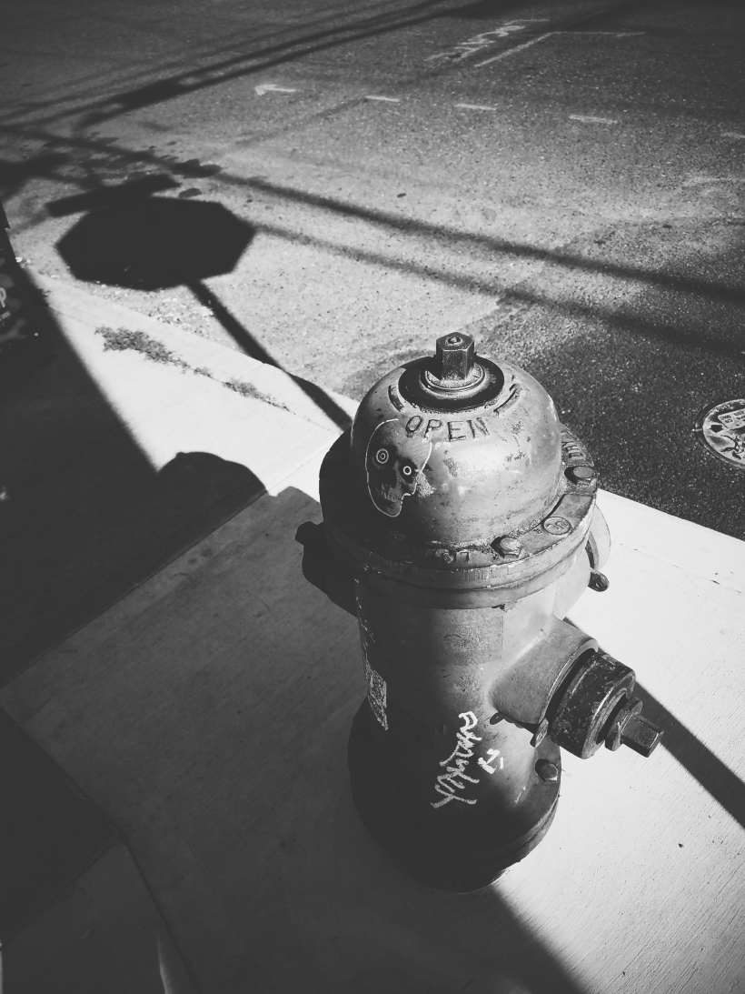 black and white, urban, fire hydrant, shadows, erin j bernard, terrible creative blog, ejb writing studio