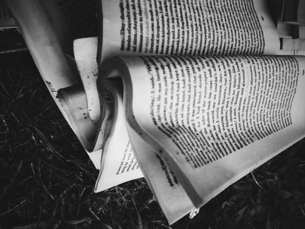 old book, black and white book, gothic, dirt, moldering book, erin j bernard, ejb writing studio